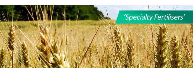 horticulture-banner1