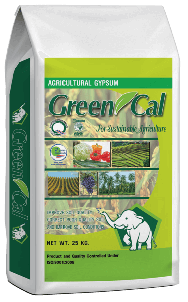 Green Cal (2)_small