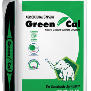Green Cal_small